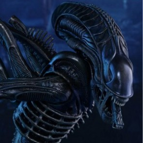 Hot Toys 1/6th Scale MMS354 Aliens: Alien Warrior Collectible Figure